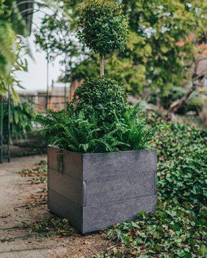 Modern Square Planter